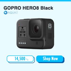 กล้อง GOPRO-HERO8-Black ราคา กล้อง GoPro 8