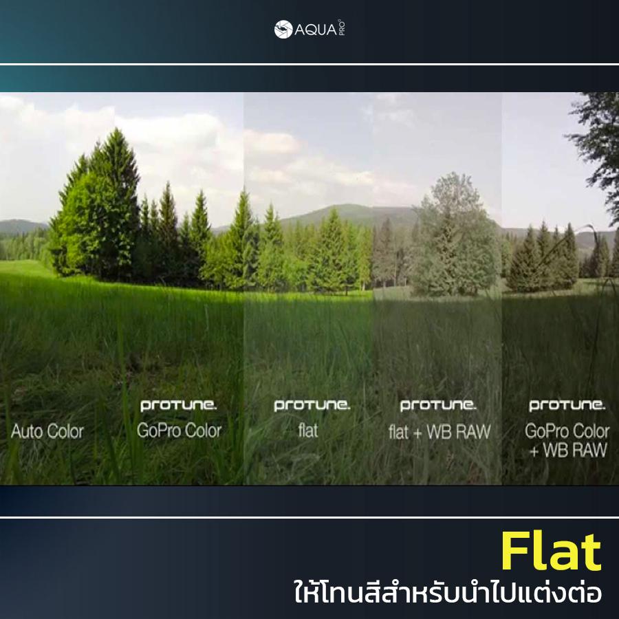 ตั้งค่า GoPro 9 Flat