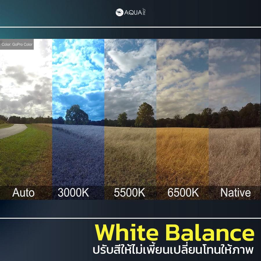 ตั้งค่า GoPro 9 white balance
